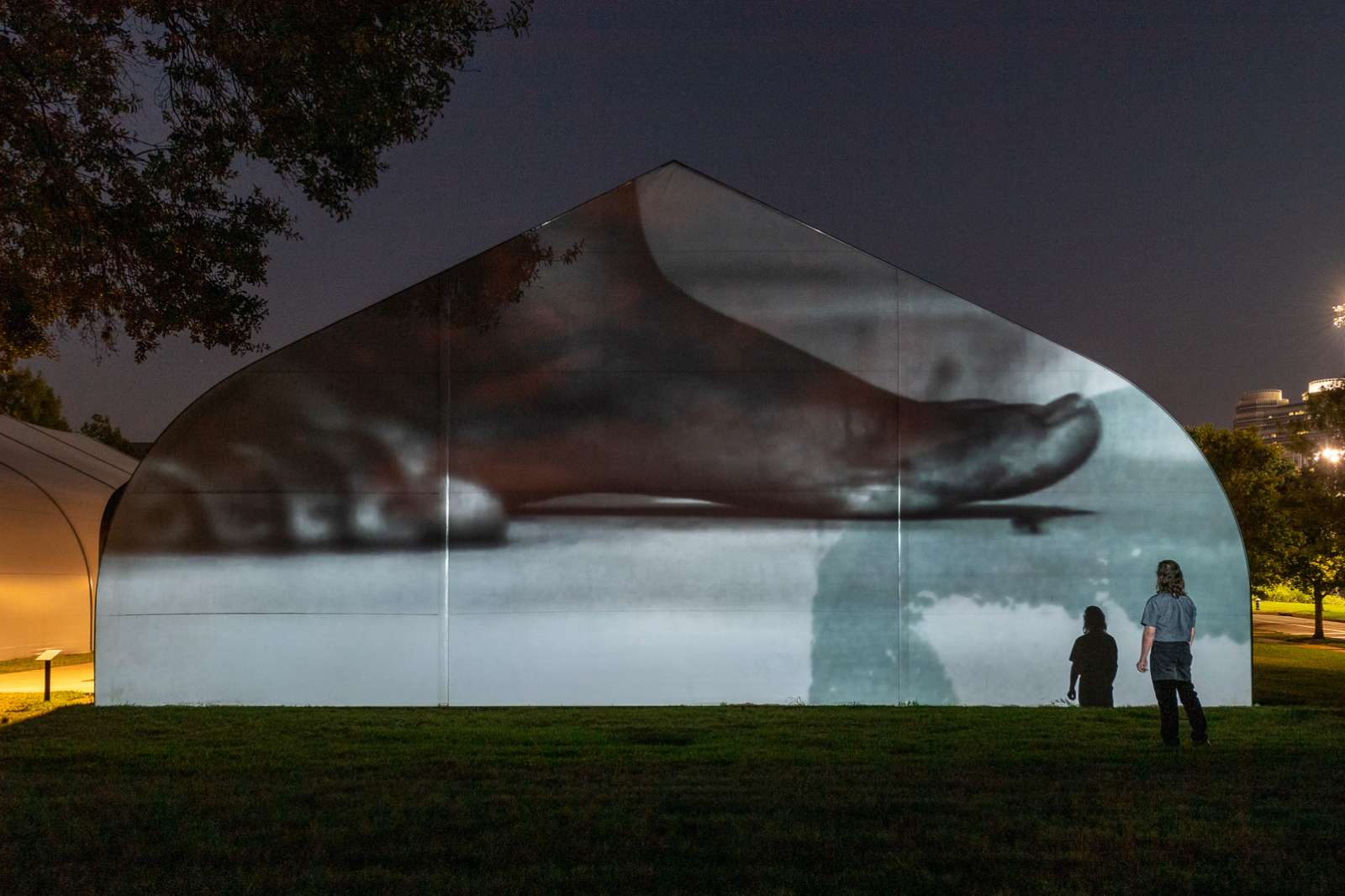 Image of Charisse Pearline Weston's video projection at night on the side of a tent, on Rice's campus