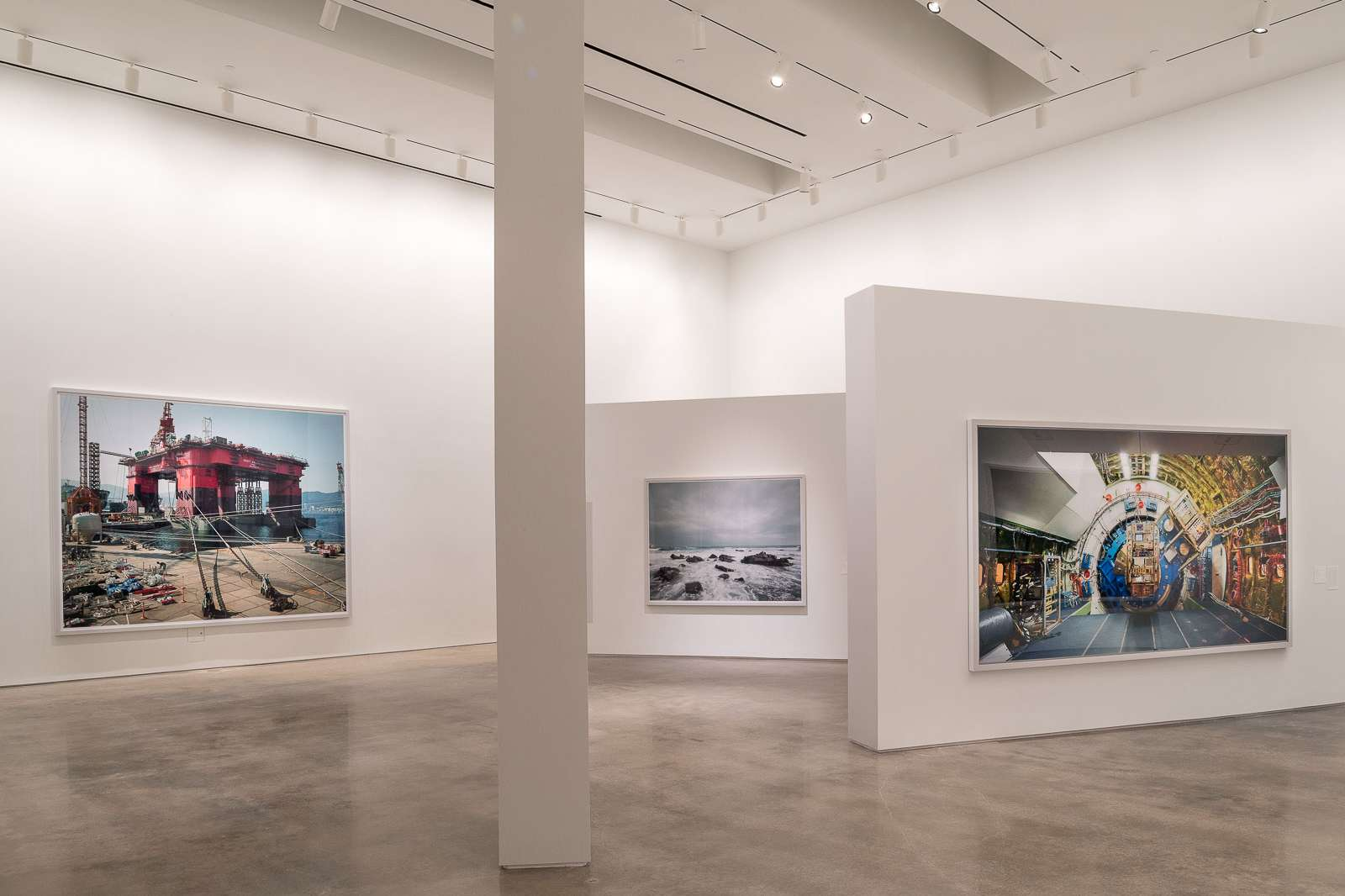 dInstallation view of Thomas Struth: Nature & Politics at the Moody Center for the Arts. ©Thomas Struth. Photo: Nash Baker